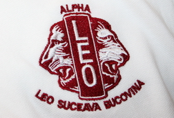 broderie-tricouri-bumbac